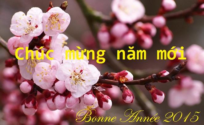 Fermeture de 15 au 23 février 2015 (Fête du Têt,  Nouvel An Vietnamien)
