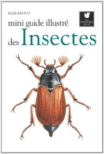 MINI GUIDE ILLUSTRE DES INSECTES